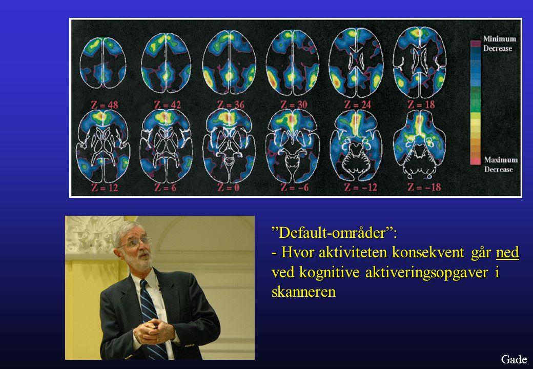 Default-områder : - Hvor aktiviteten konsekvent går ned ved kognitive aktiveringsopgaver i skanneren.
