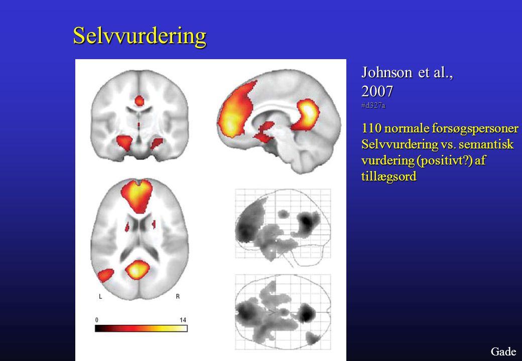 Selvvurdering Johnson et al., 2007 110 normale forsøgspersoner
