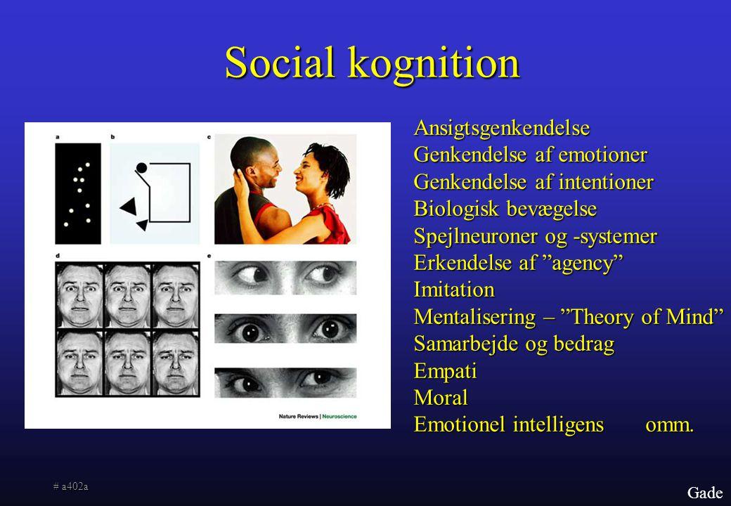 Social kognition