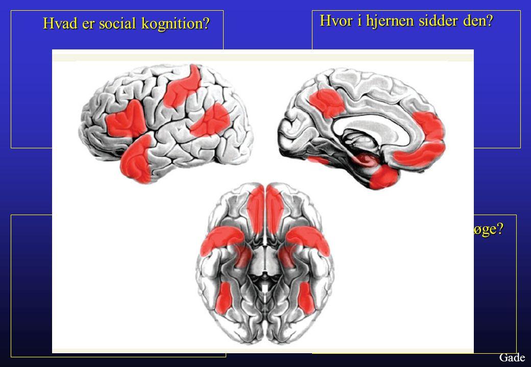 Hvad er social kognition Hvor i hjernen sidder den