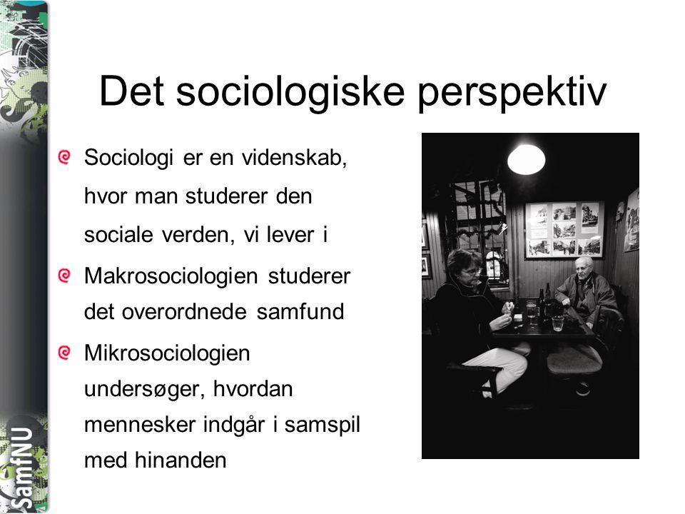 Det sociologiske perspektiv