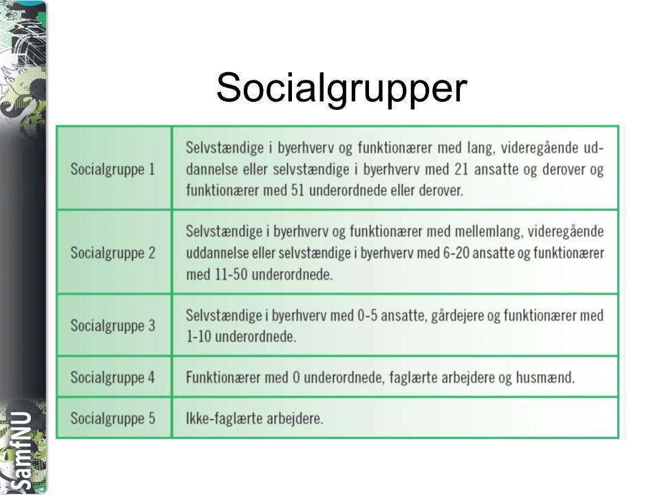 Socialgrupper