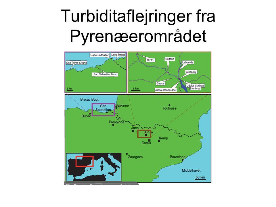 Turbiditaflejringer fra Pyrenæerområdet