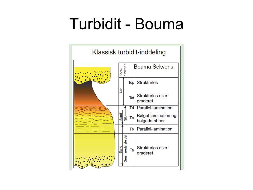 Turbidit - Bouma
