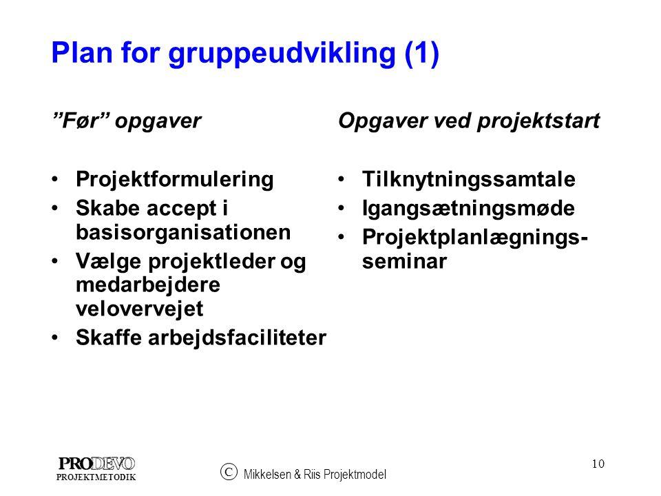 Plan for gruppeudvikling (1)