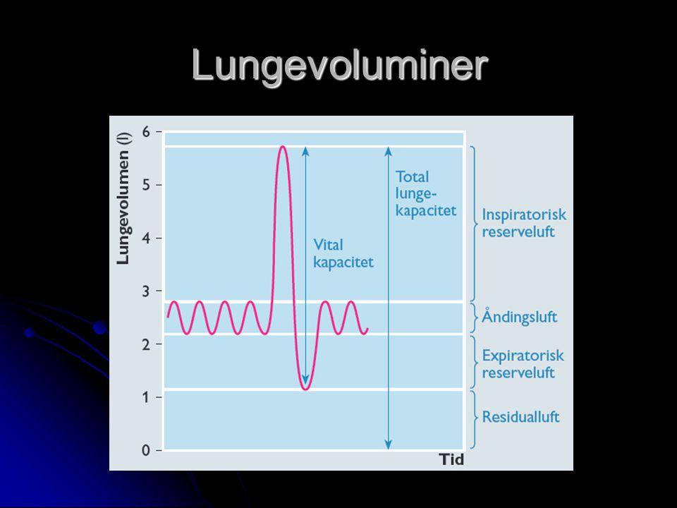 Lungevoluminer