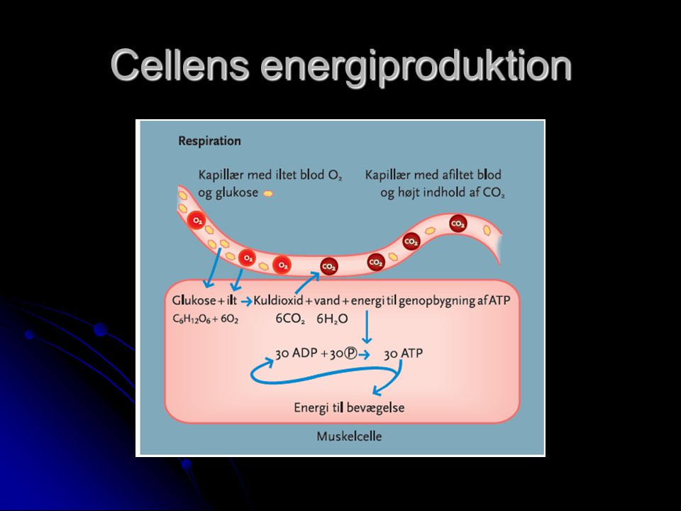 Cellens energiproduktion