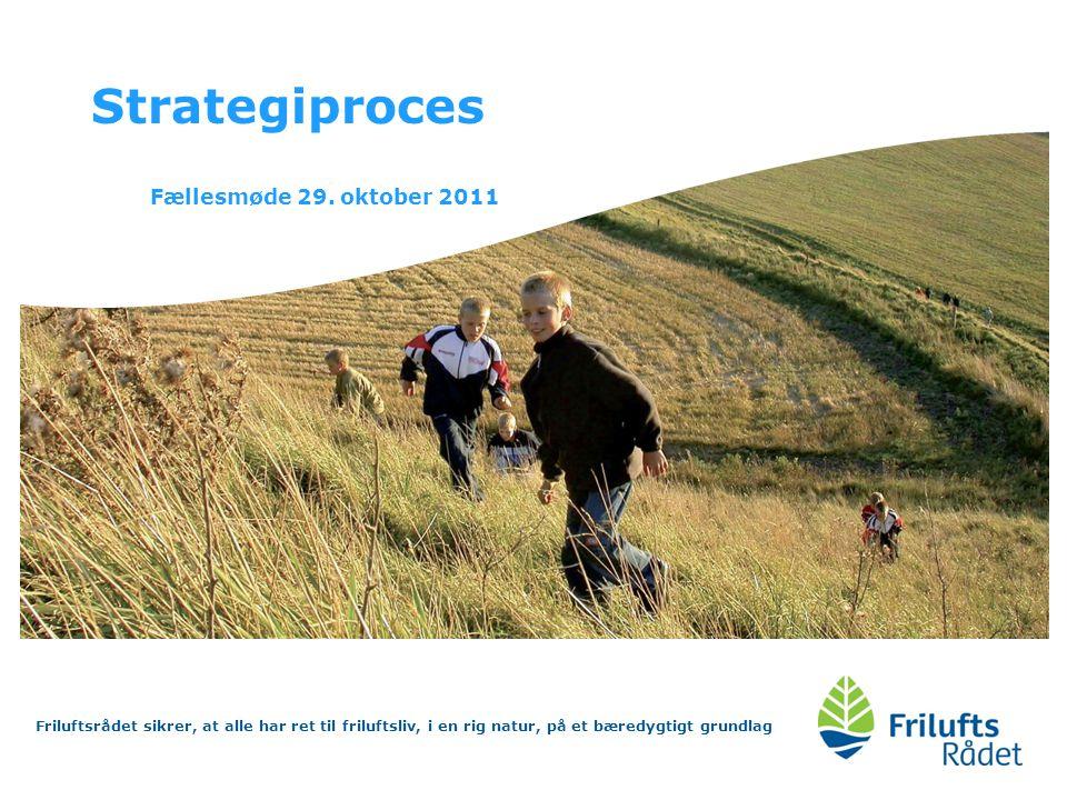Strategiproces Fællesmøde 29. oktober 2011