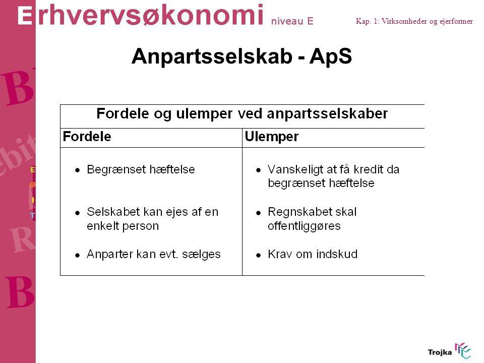 Kap. 1: Virksomheder og ejerformer