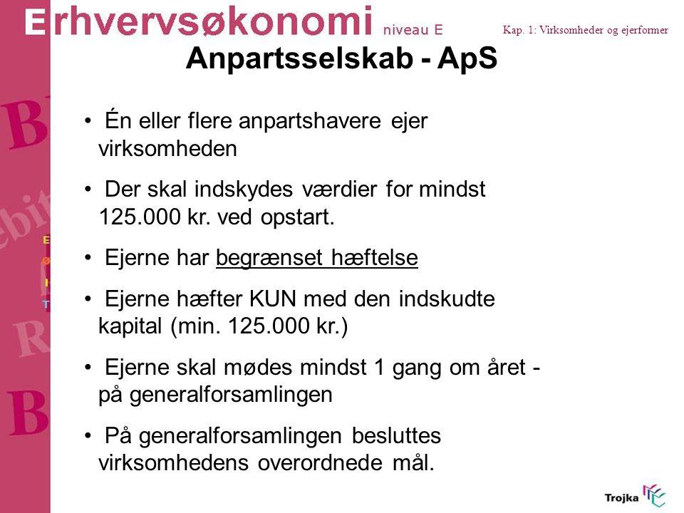 Anpartsselskab - ApS Én eller flere anpartshavere ejer virksomheden