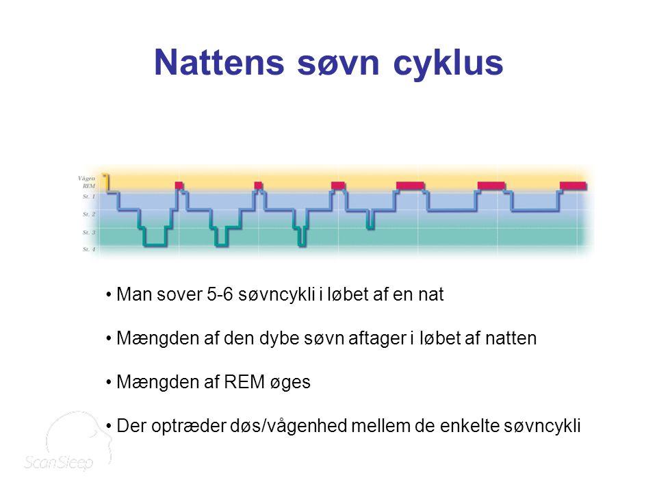 Nattens søvn cyklus Man sover 5-6 søvncykli i løbet af en nat