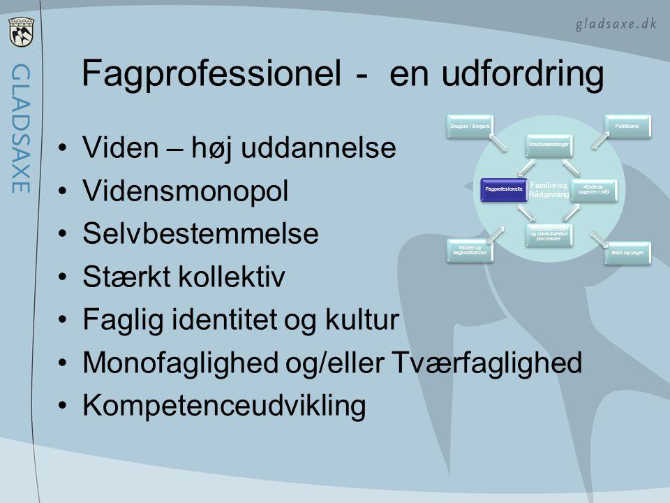 Fagprofessionel - en udfordring