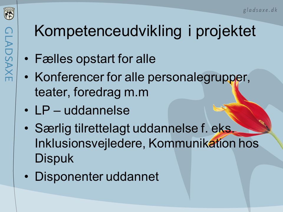 Kompetenceudvikling i projektet