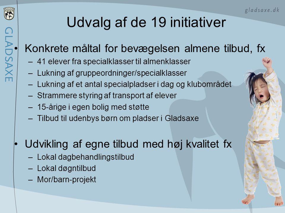 Udvalg af de 19 initiativer