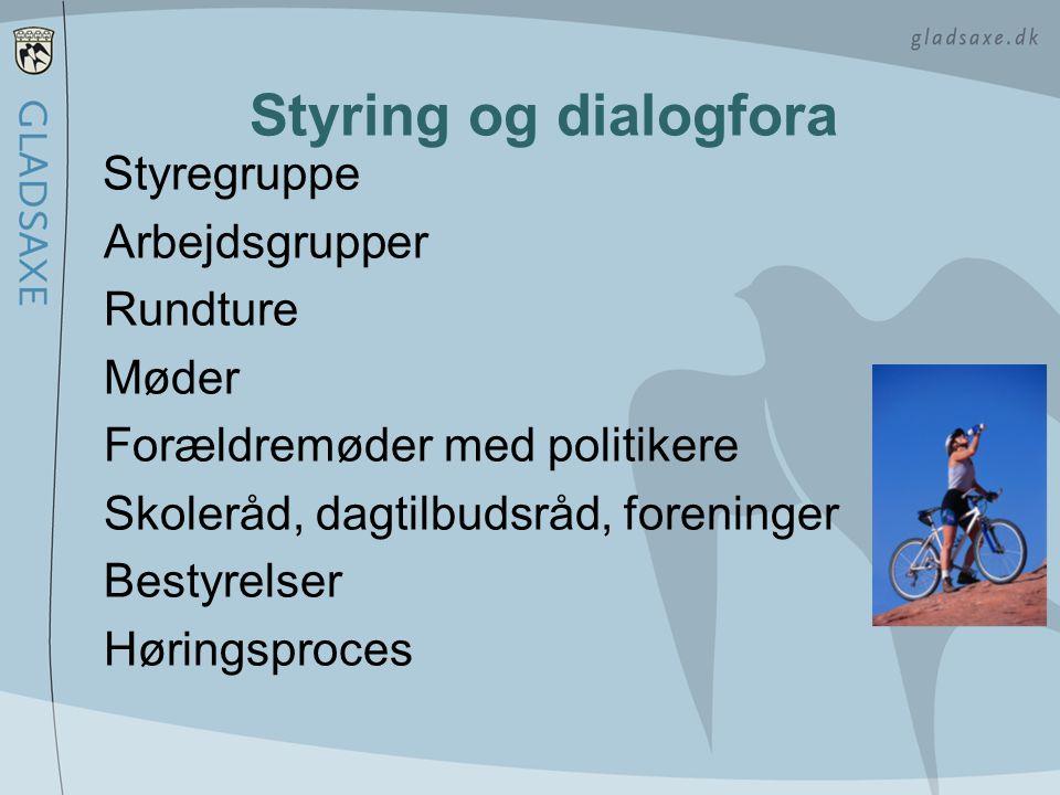 Styring og dialogfora