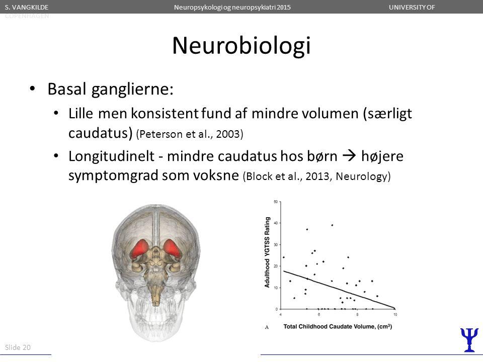 Neurobiologi Basal ganglierne: