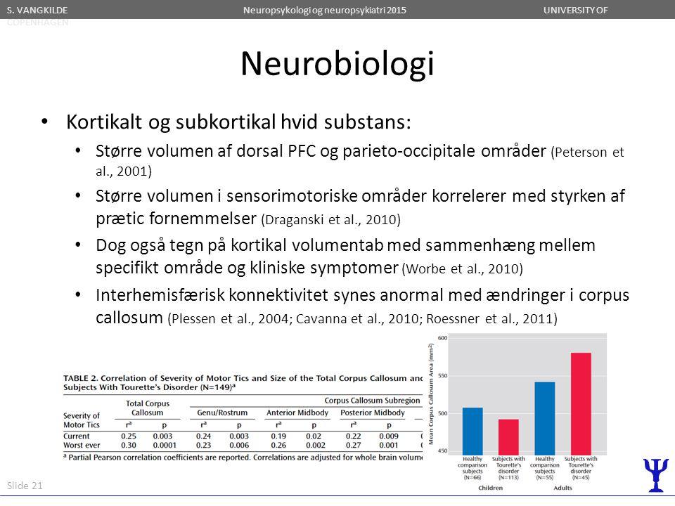 Neurobiologi Kortikalt og subkortikal hvid substans: