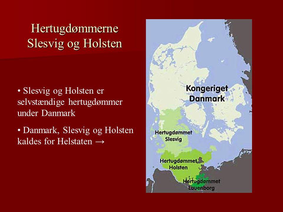 Hertugdømmerne Slesvig og Holsten