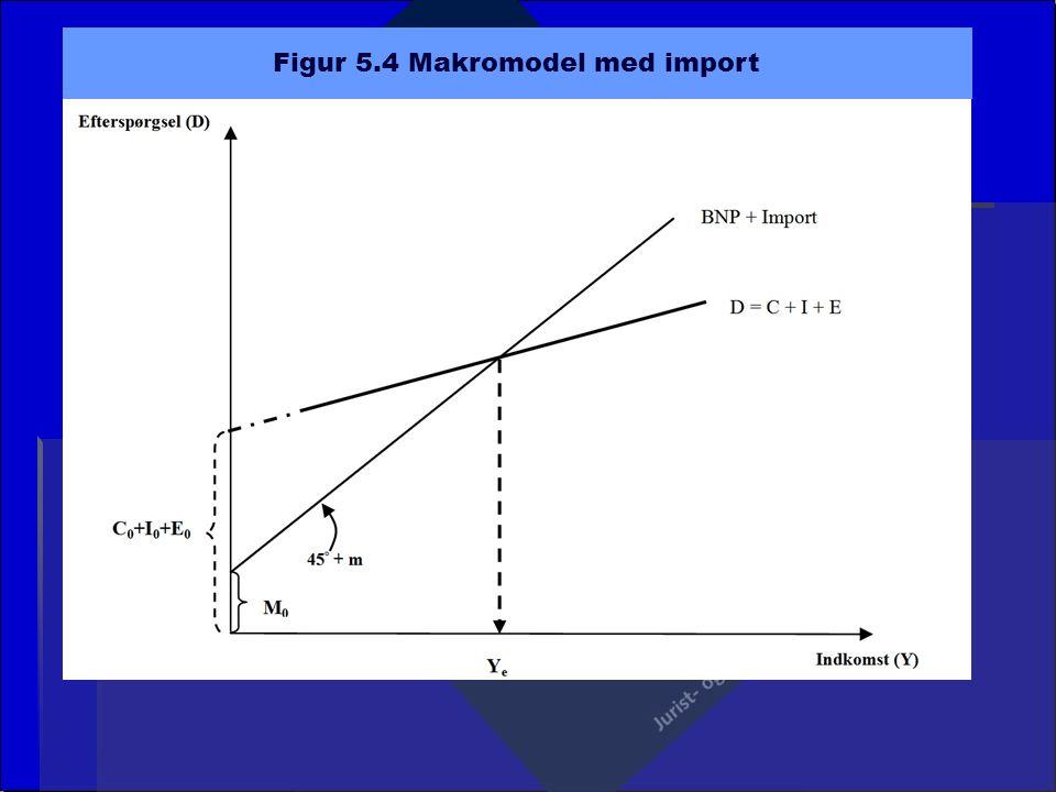 Figur 5.4 Makromodel med import