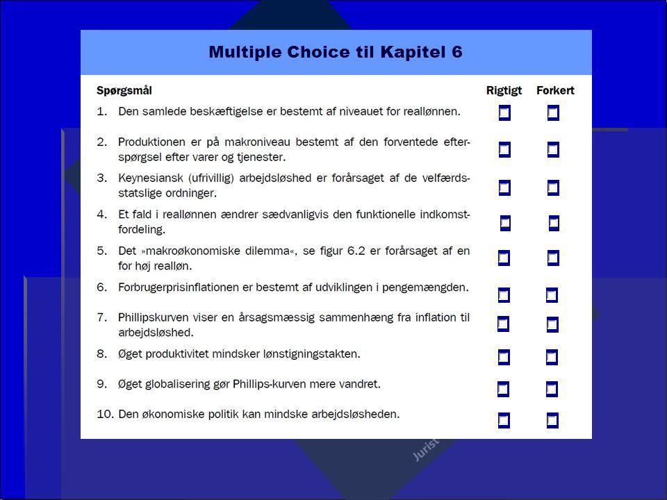 Multiple Choice til Kapitel 6