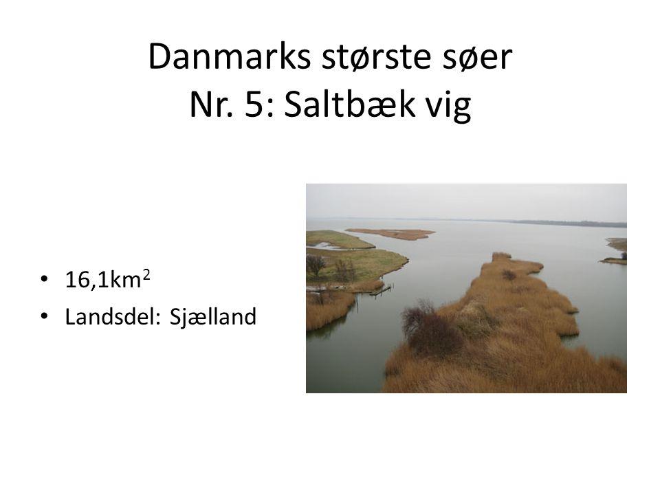 Danmarks største søer Nr. 5: Saltbæk vig