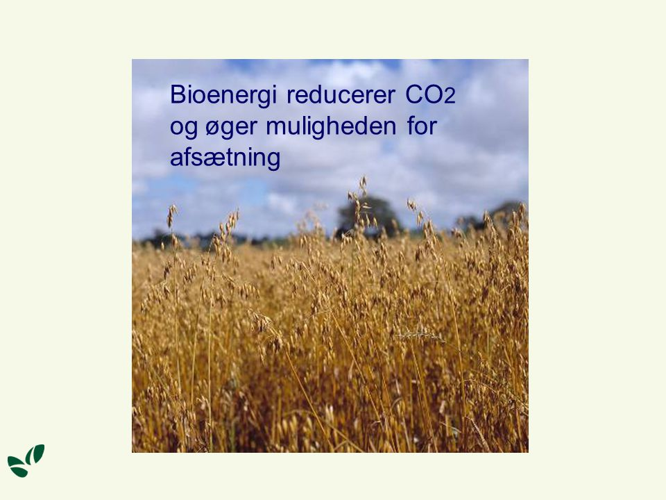 Bioenergi reducerer CO2 og øger muligheden for afsætning