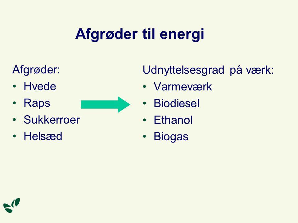 Afgrøder til energi Afgrøder: Udnyttelsesgrad på værk: Hvede Varmeværk
