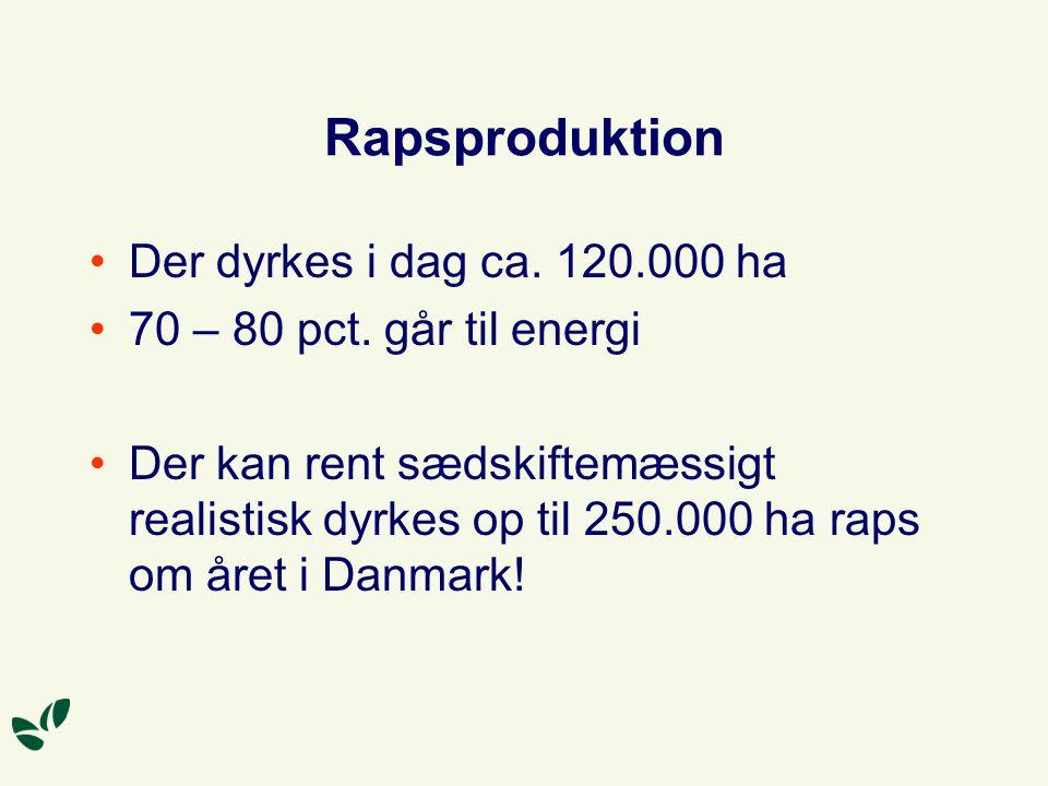 Rapsproduktion Der dyrkes i dag ca. 120.000 ha