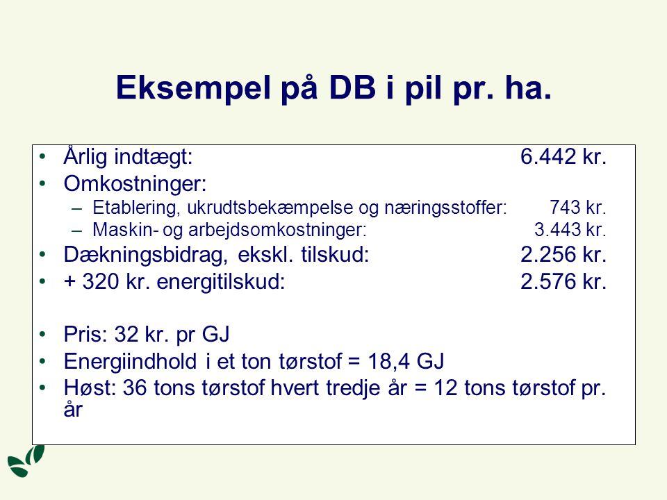 Eksempel på DB i pil pr. ha.
