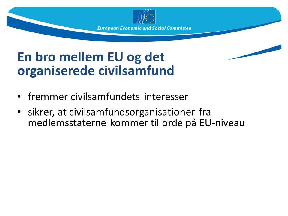 En bro mellem EU og det organiserede civilsamfund