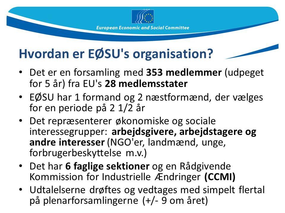 Hvordan er EØSU s organisation