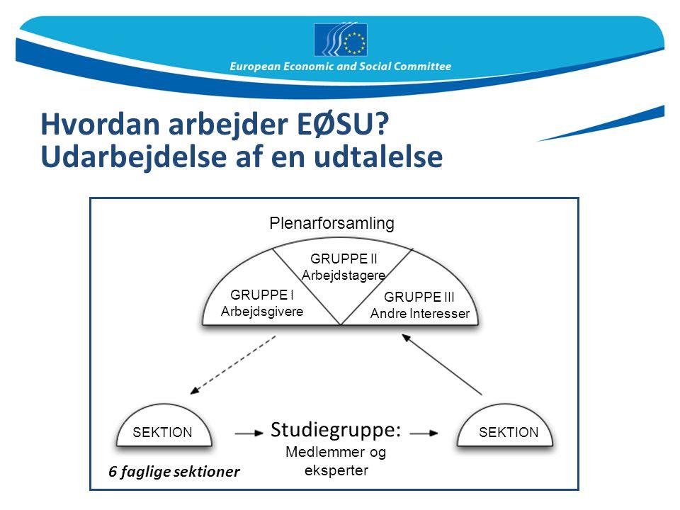 Hvordan arbejder EØSU Udarbejdelse af en udtalelse