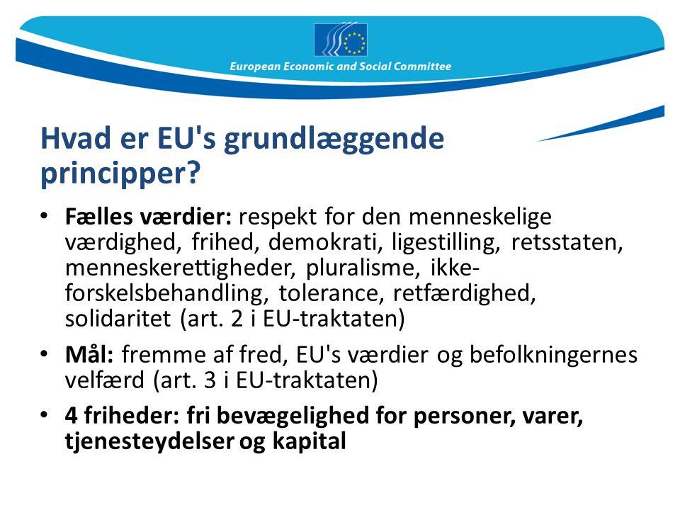 Hvad er EU s grundlæggende principper
