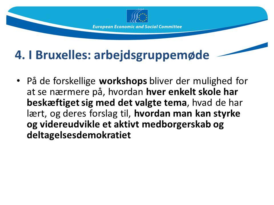 4. I Bruxelles: arbejdsgruppemøde