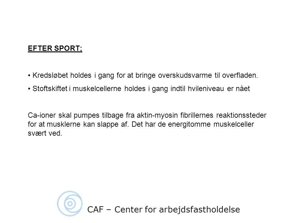 CAF – Center for arbejdsfastholdelse
