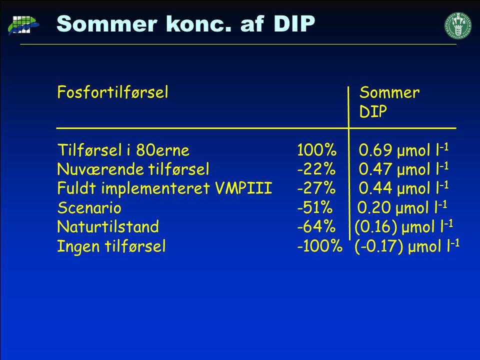 Sommer konc. af DIP Fosfortilførsel Sommer DIP