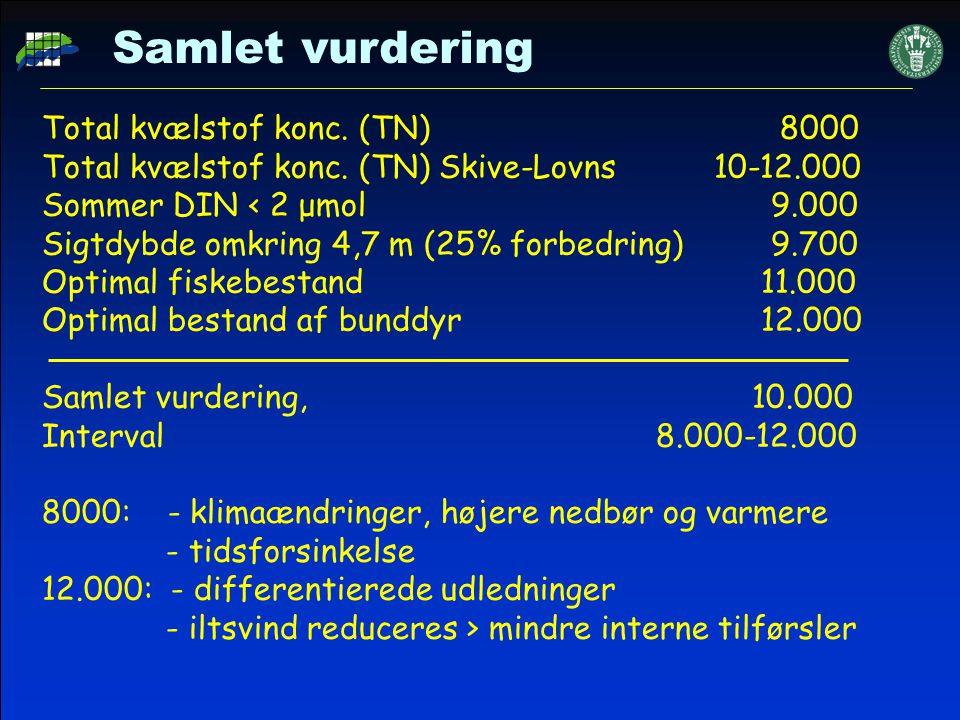 Samlet vurdering Total kvælstof konc. (TN) 8000