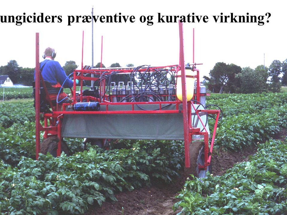 Fungiciders præventive og kurative virkning
