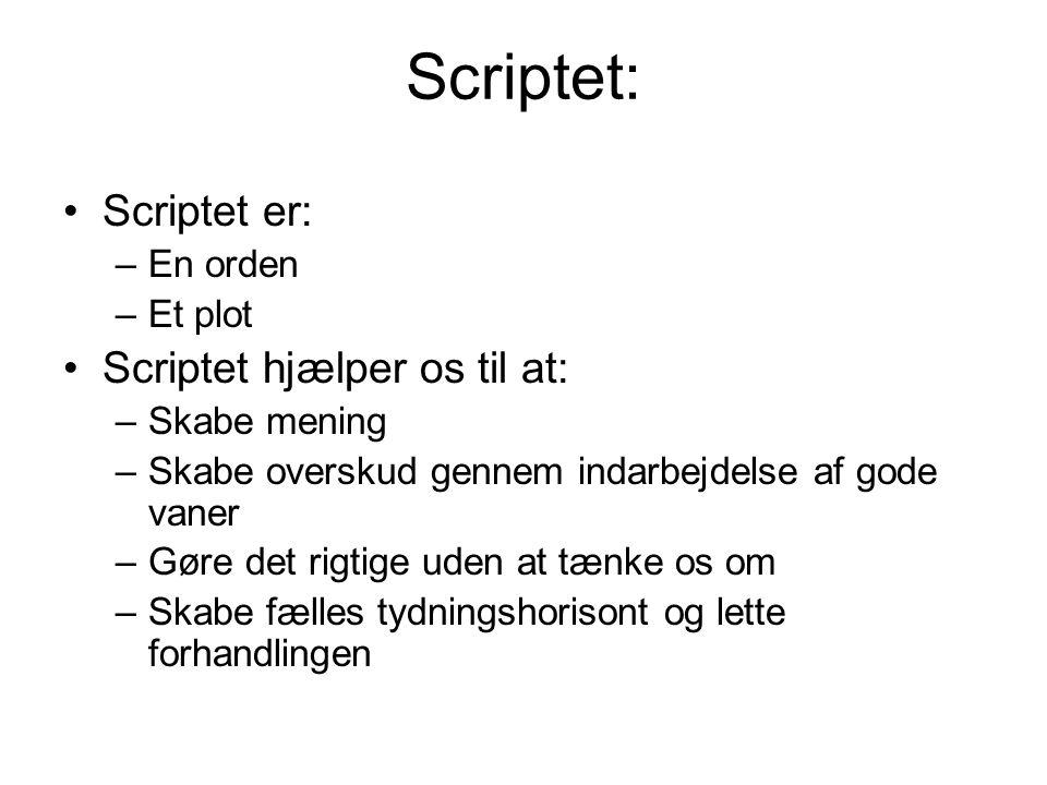 Scriptet: Scriptet er: Scriptet hjælper os til at: En orden Et plot