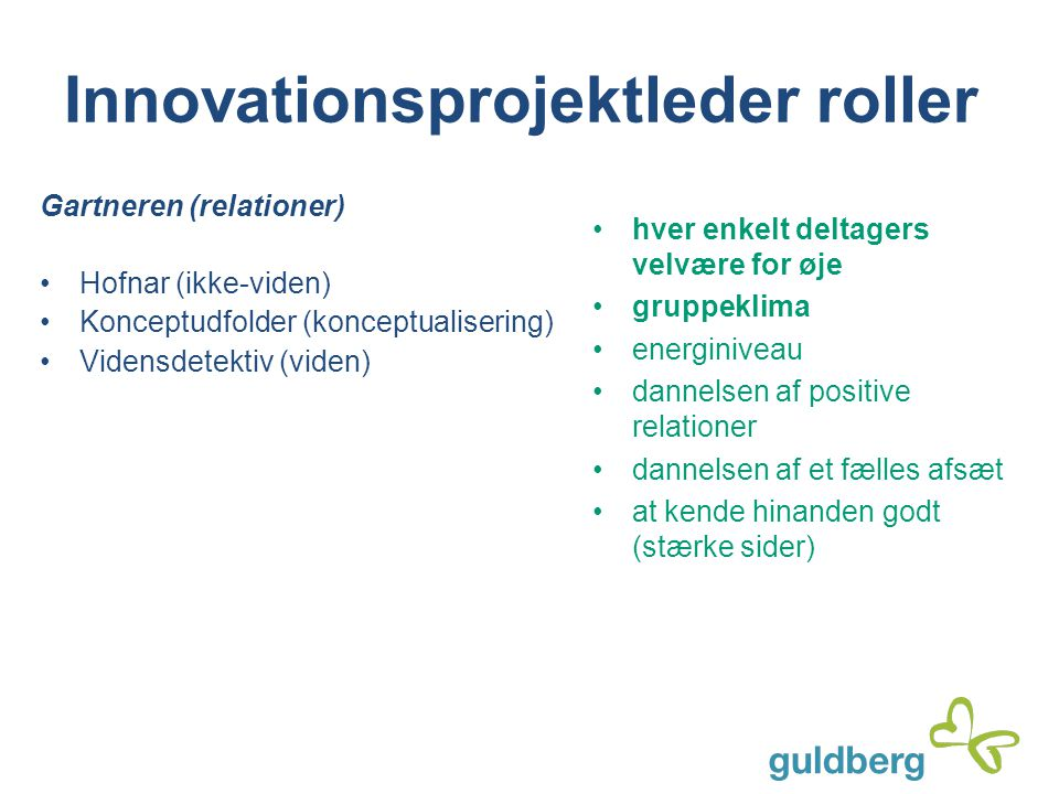 Innovationsprojektleder roller