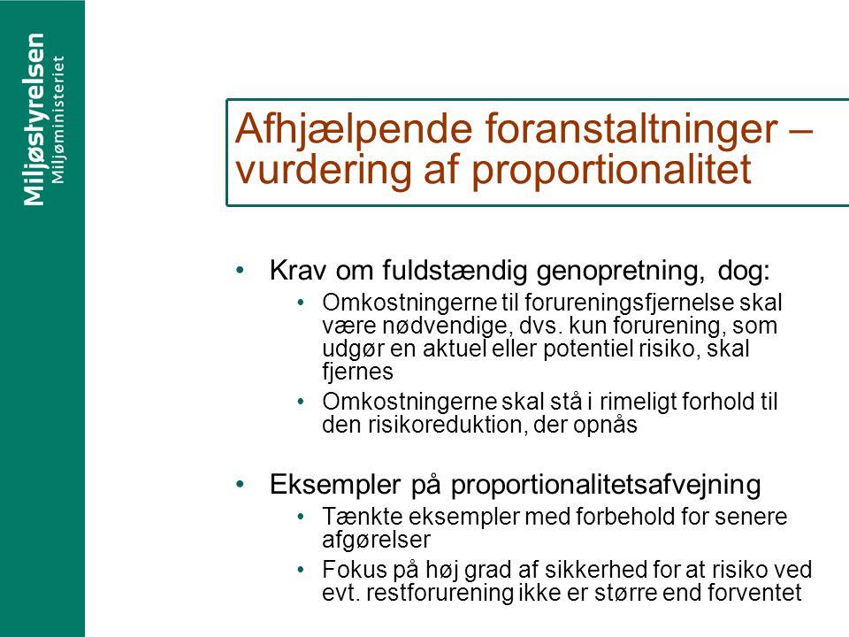 Afhjælpende foranstaltninger – vurdering af proportionalitet