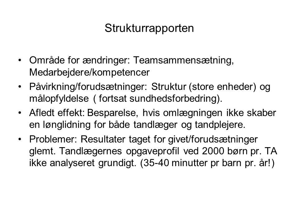 Strukturrapporten Område for ændringer: Teamsammensætning, Medarbejdere/kompetencer.