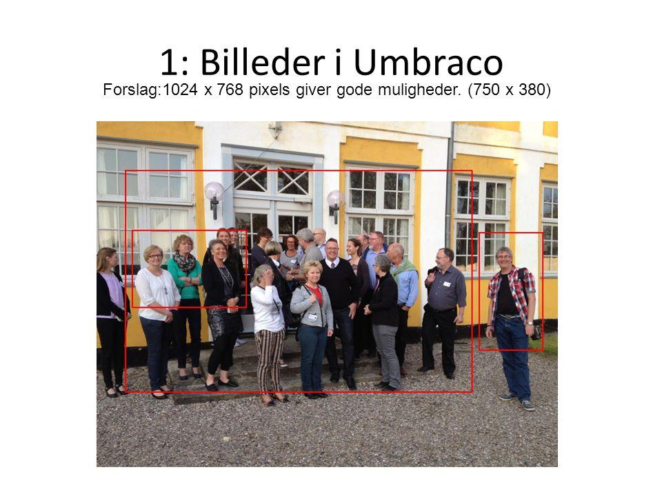 1: Billeder i Umbraco Forslag:1024 x 768 pixels giver gode muligheder. (750 x 380)