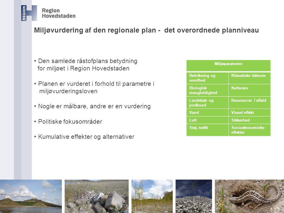Miljøvurdering af den regionale plan - det overordnede planniveau