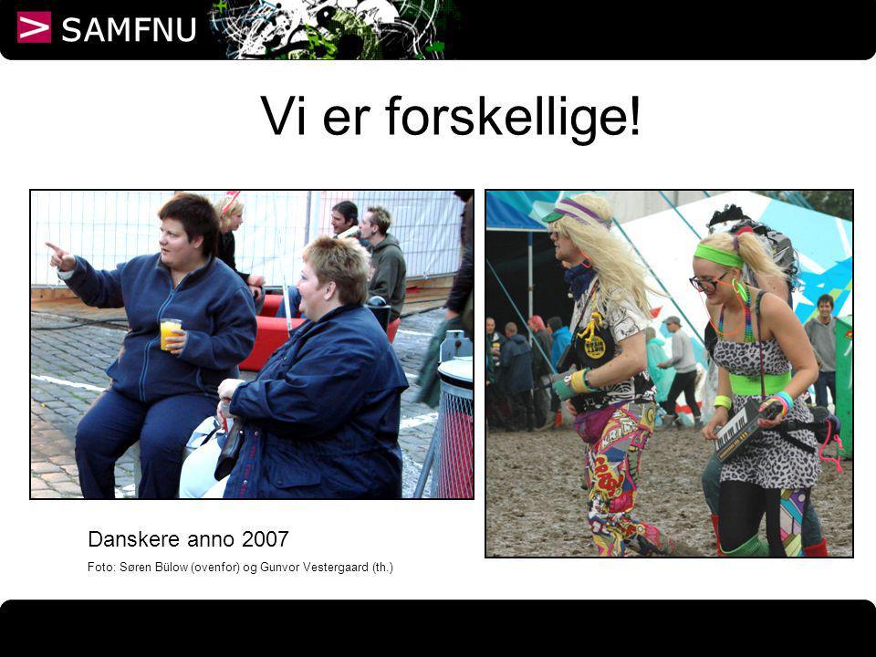 Vi er forskellige! Danskere anno 2007