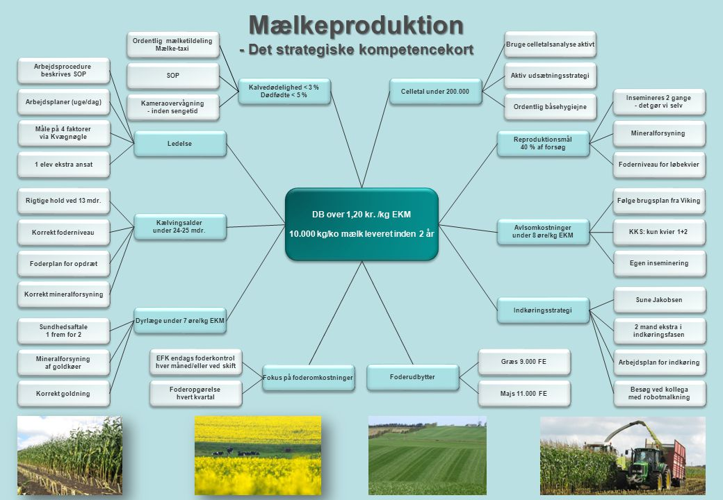 Mælkeproduktion - Det strategiske kompetencekort