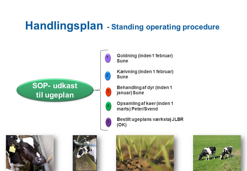 Handlingsplan - Standing operating procedure