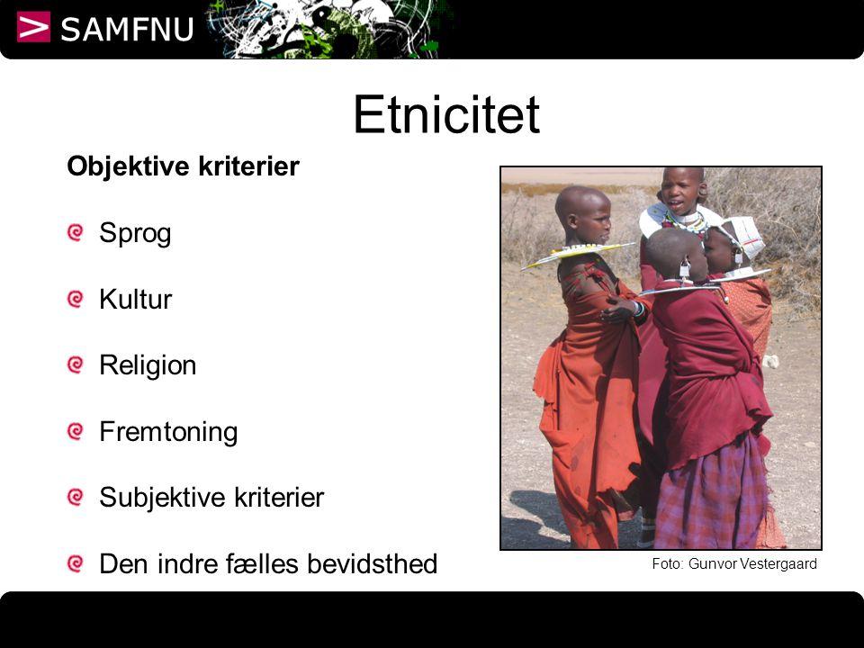 Etnicitet Objektive kriterier Sprog Kultur Religion Fremtoning