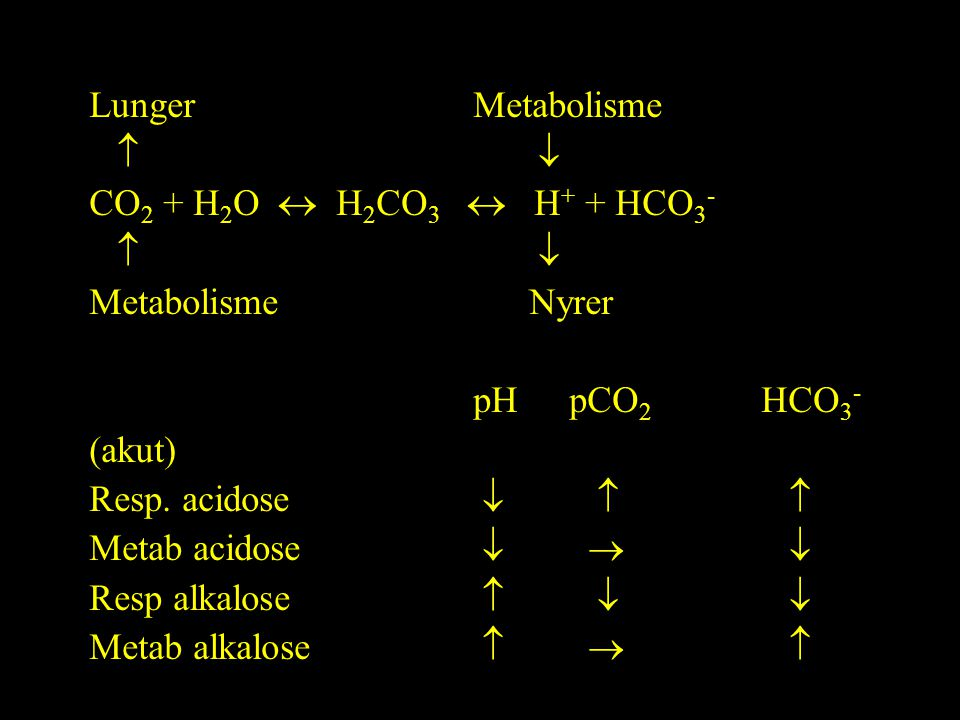 Lunger Metabolisme   CO2 + H2O  H2CO3  H+ + HCO3- Metabolisme Nyrer.