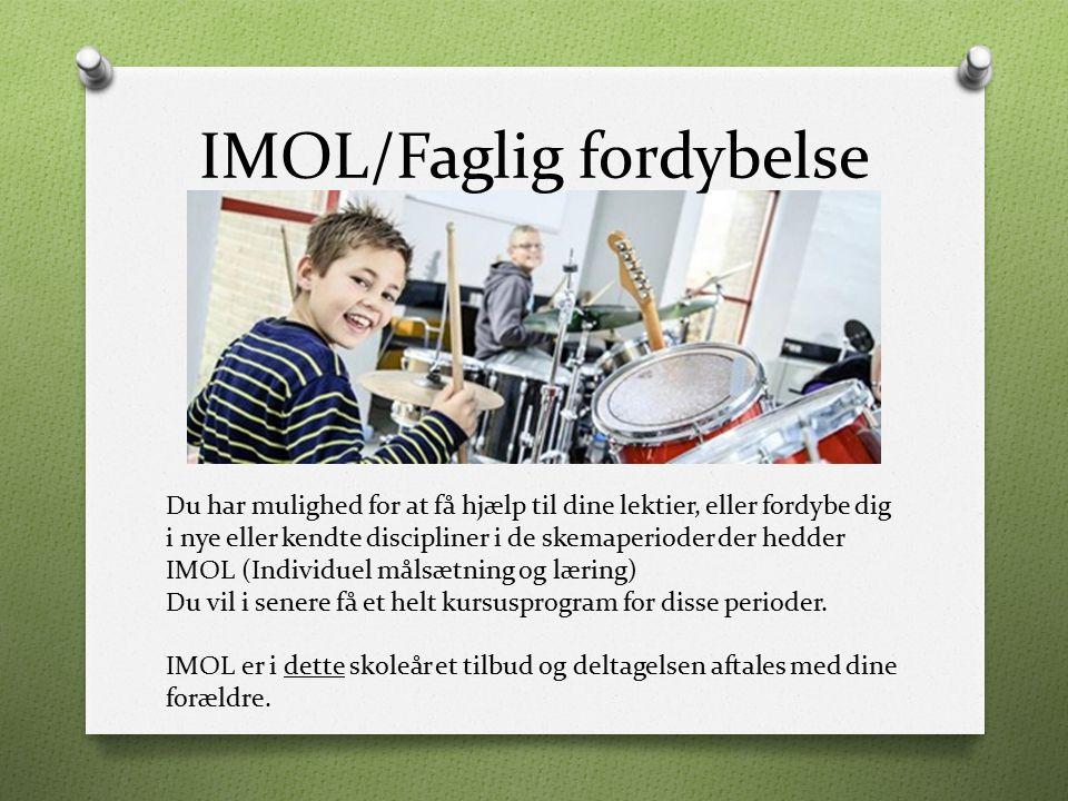 IMOL/Faglig fordybelse